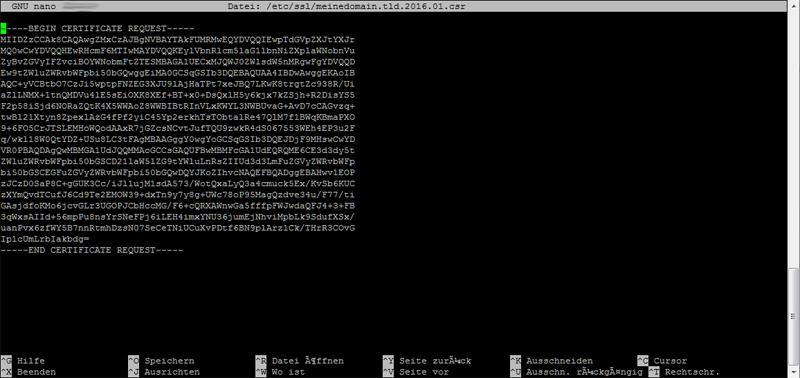 multi-domain-CSR-mit-OpenSSL-erstellen-3